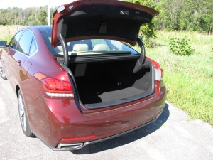 Copious trunk space in the Genesis!