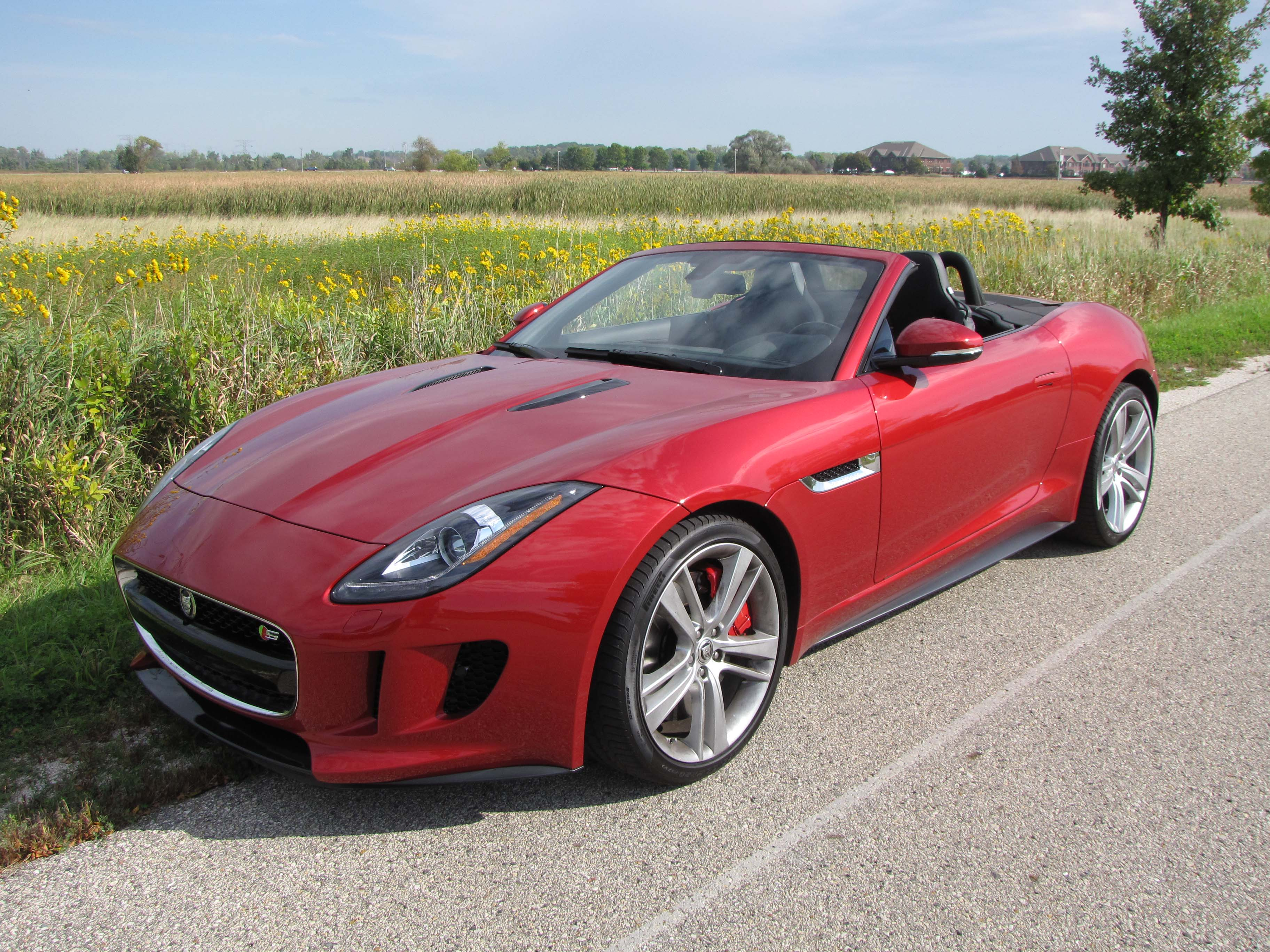 2014 Jaguar F Type V8 S Convertible Savage On Wheels