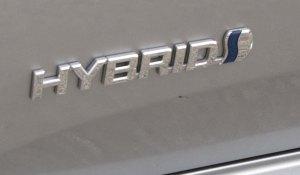 avalon hybrid badge