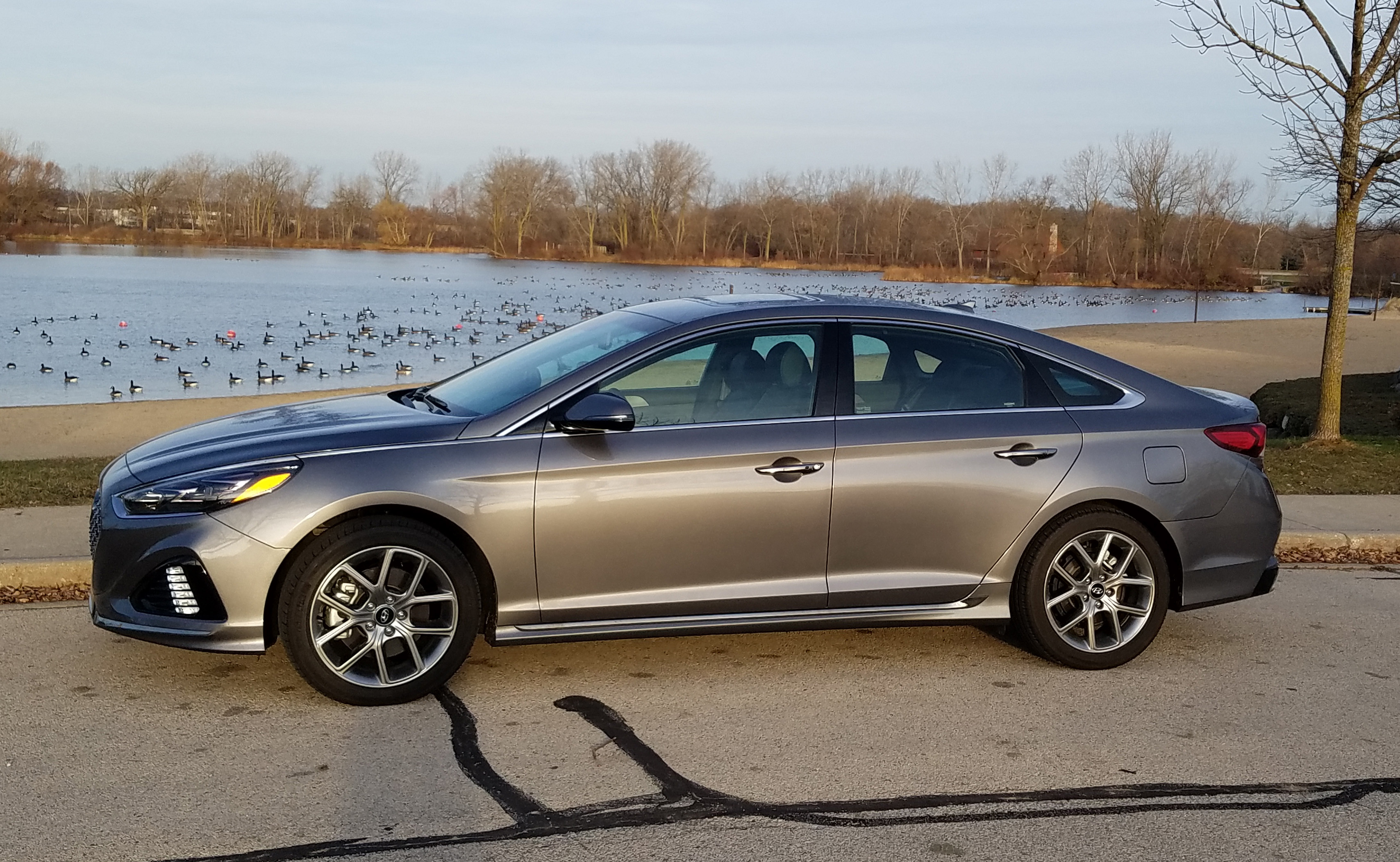 2018 Hyundai Sonata Limited 2 0t Savage On Wheels